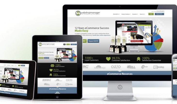 Company for Web Development